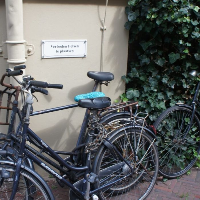 Bicycles in the Hague